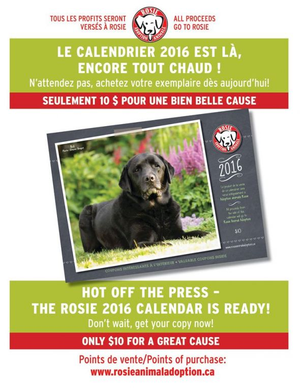 Hot off the Press! The Rosie 2016 calendar has arrived!